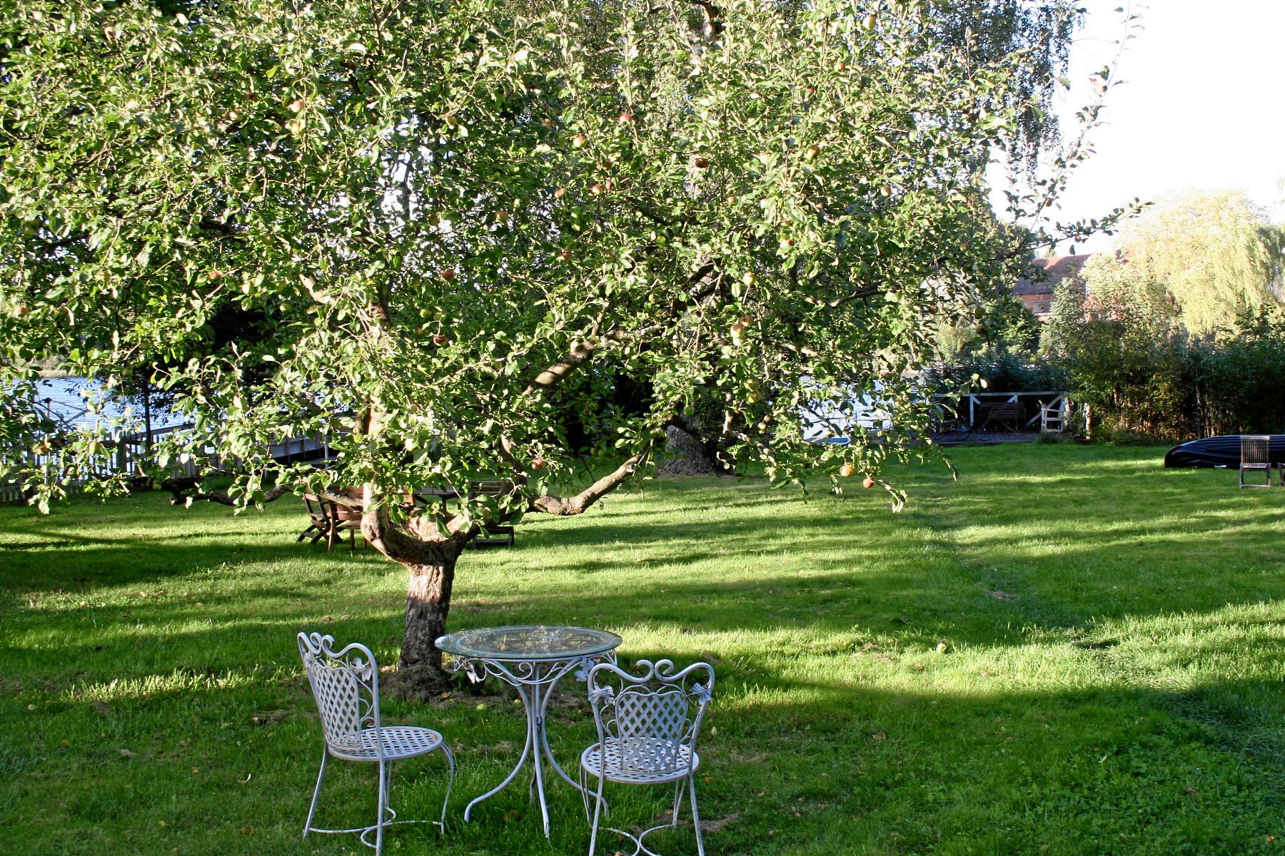 Home - Haus Seenland - Apartments, Cafè & Laden, Kellerbar
